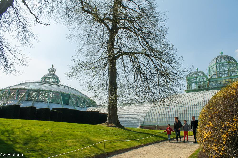 Gradina de vara si Biserica de fier, Serele regale din Laeken