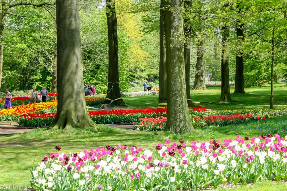 Floralia, Groot Bijgaarden, Belgia
