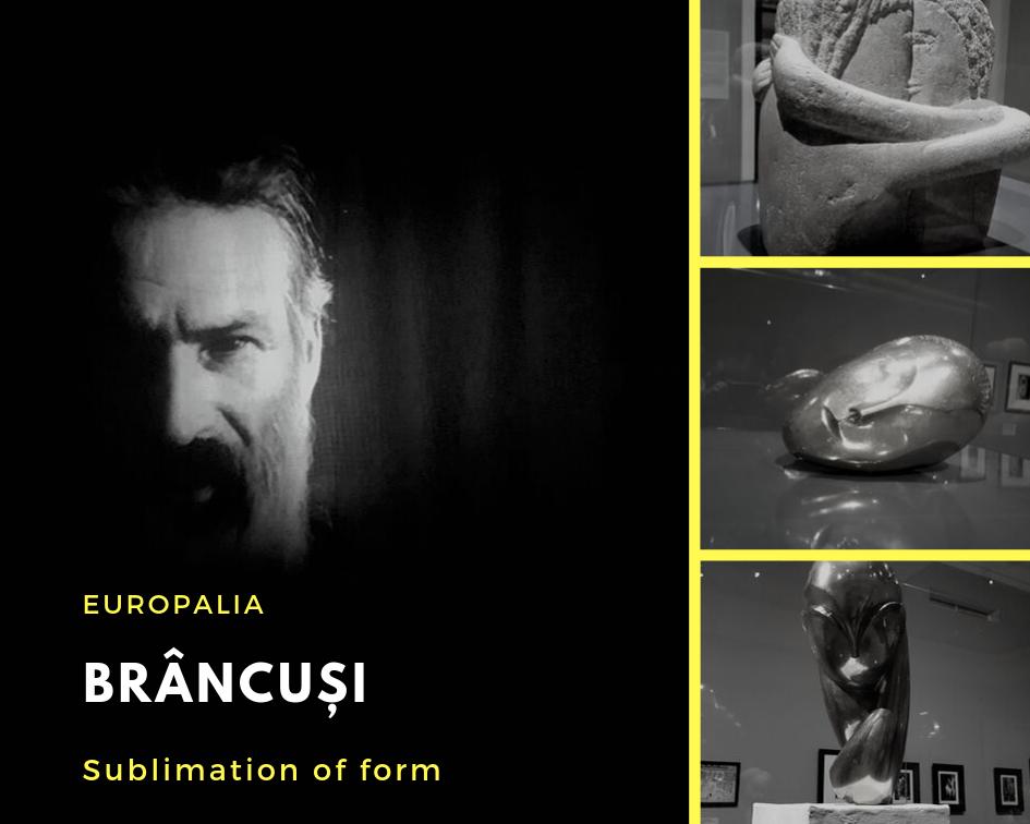 Brancusi, expo, Europalia la Bruxelles