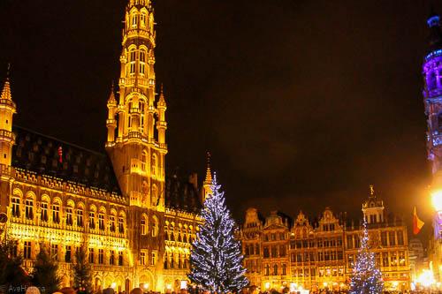 hotel-de-ville, bruxelles, iarna